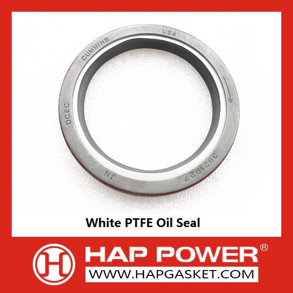 White PTFE Oil Seal