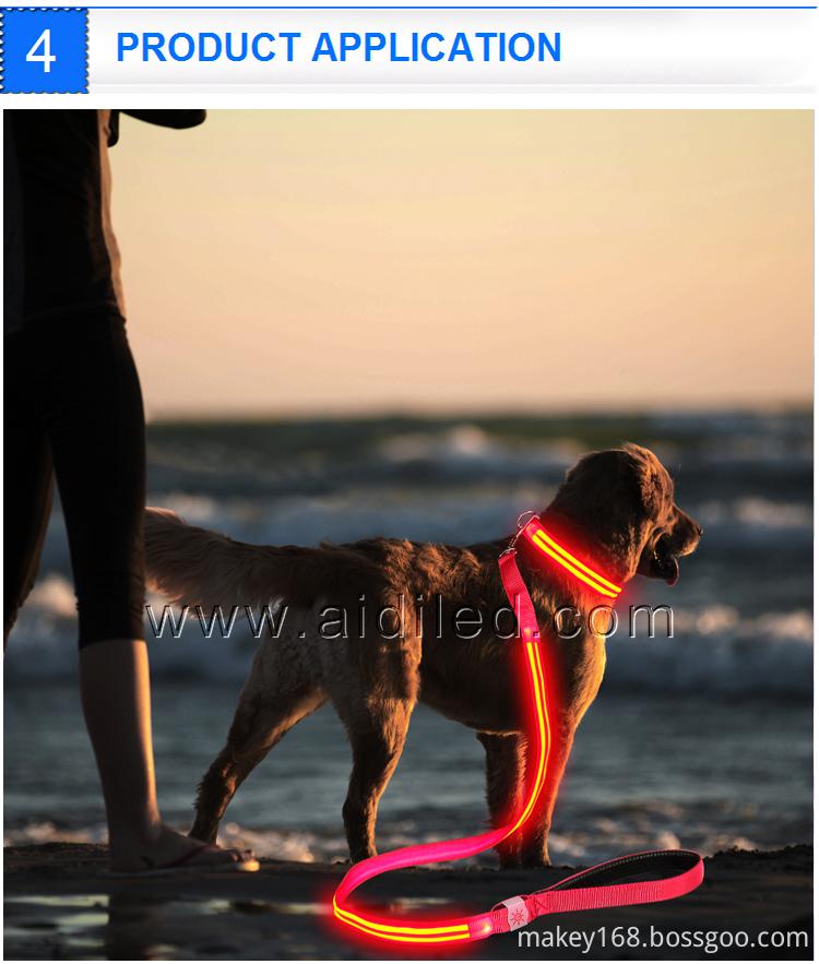 Dog Leash That Lights Up