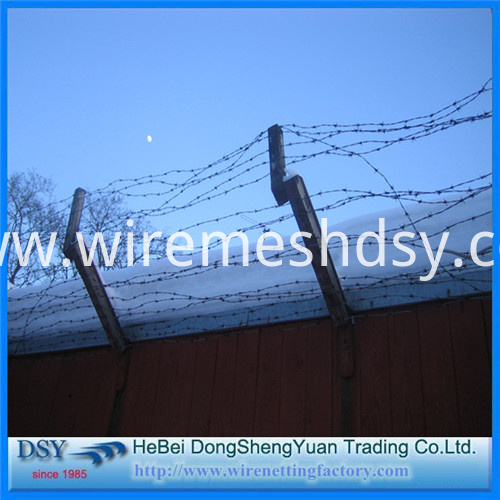 Barbed Iron Wire