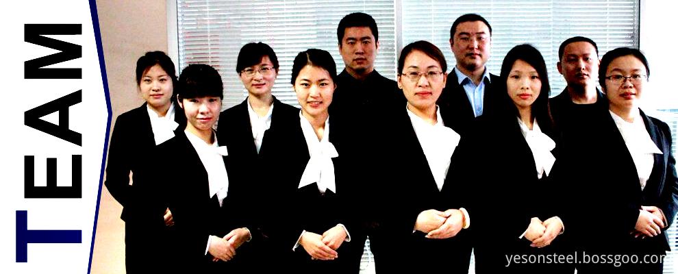 Hebei Yeson Service