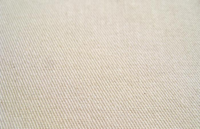 Cotton Twill Cloth