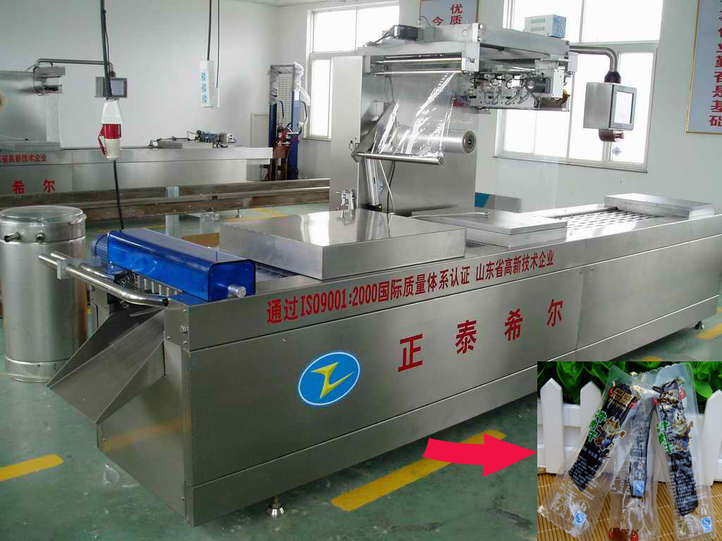 International standard automatic vacuum packing machine for plastic bags