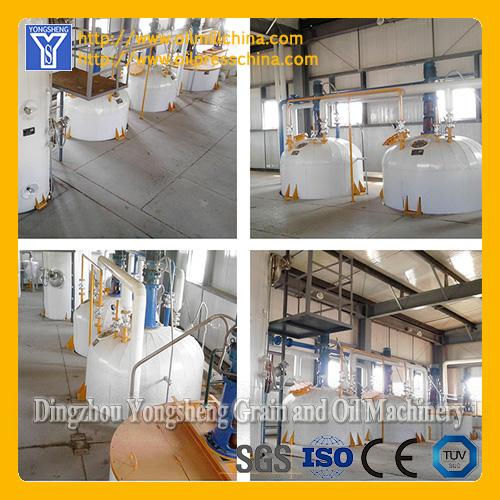 Peanut Oil Extraction Equipment