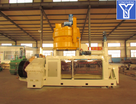 Canola Oil Milling Machine