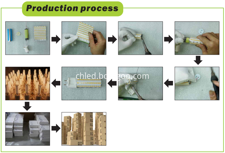 Processing of G12 bulbs