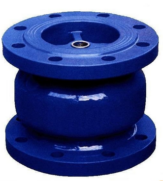 Check valve2