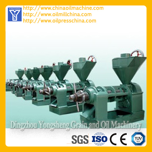 Small Sunflower Oil Mill