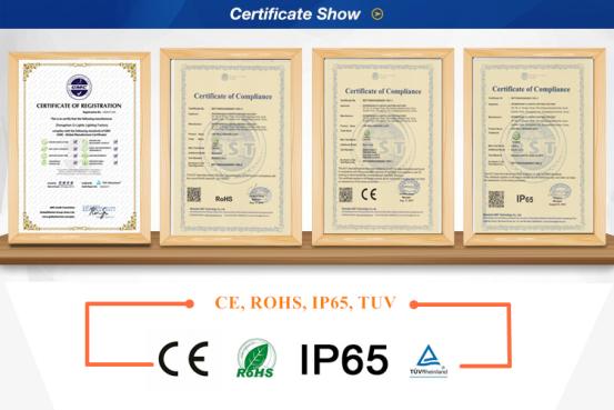 CE ROHS IP65 CERTIFICATE