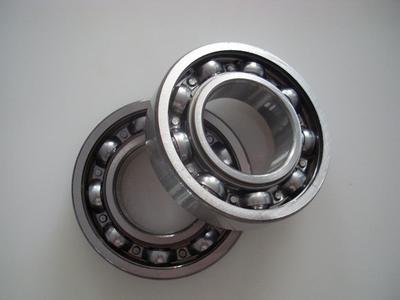 6000 series bearing