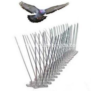 pest bird metal spike