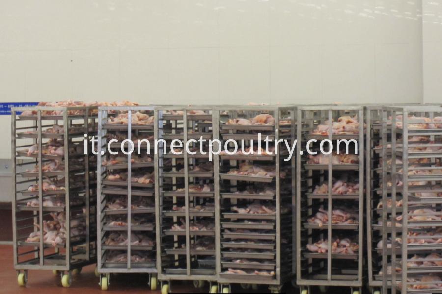 processing equipment 7
