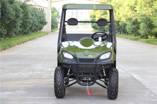 2015 New Electric UTV