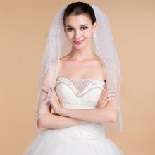 Simple Elegant Lace Appliques Wedding Veil