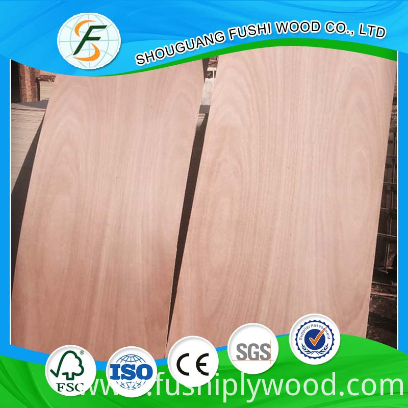 door skin plywood 004