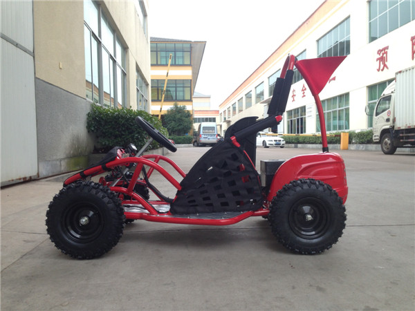 Electric Go Kart 1000w for Kids