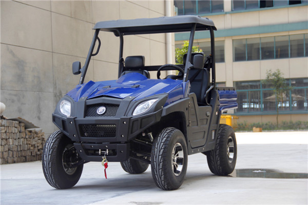 2 Seaters 1100CC UTV