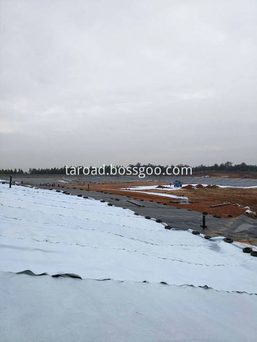 LDPEGEomembrane10_copy