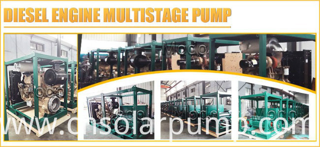 Brass Impeller Multistage Clean Water Pumps and Cost