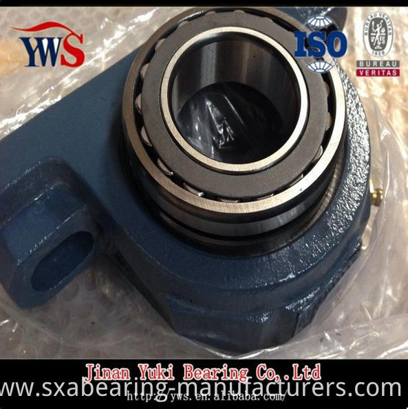 Syr1.15/1.16 Pillow Block Bearing with Cast Iron Housing