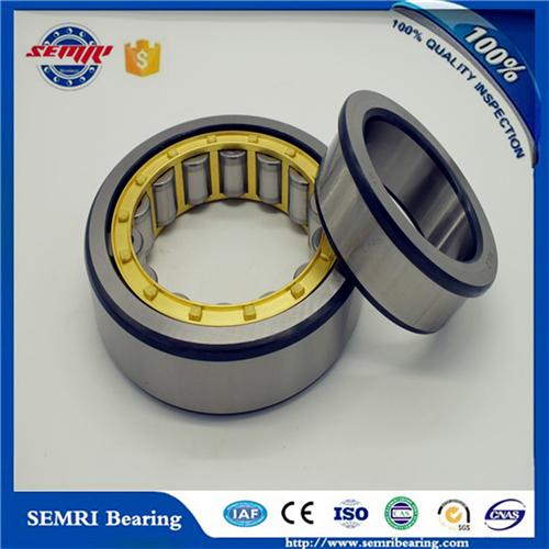 Nj2326m Roller Bearings C3 SKF Brand Cylindrical Roller Bearing