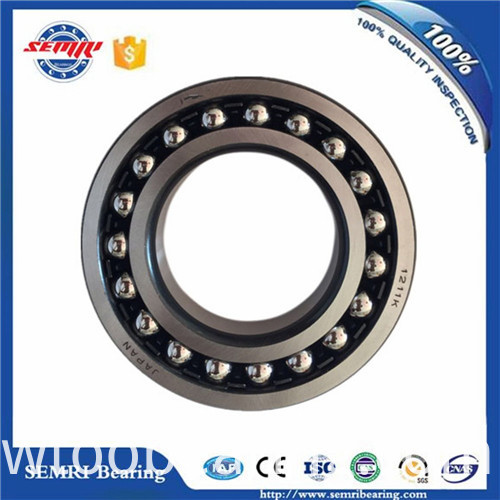High Quality SKF Aligning Ball Bearing (1205)