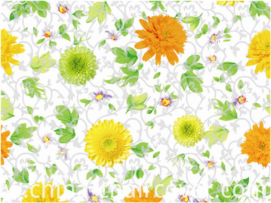 Popular Cheap PVC Printed Transparent Tablecloth (TJ0052) Lfgbchina Factory