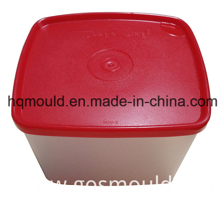 Plastic Injection Tool for Storage Container Commodity Mould