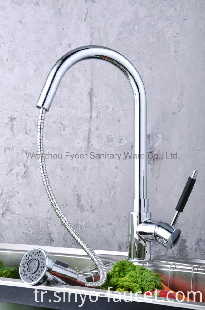 Pull out Spray Brass Kitchen Sink Faucet (QH0784)