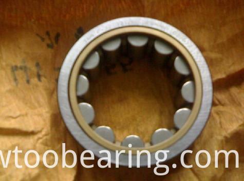 Original Japan NSK High Quality (Nu228M) Cylindrical Roller Bearing